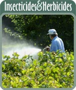 Insecticides & Herbicides